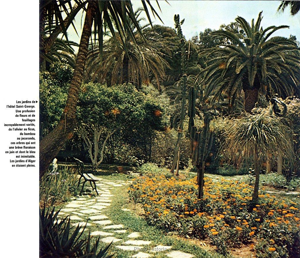 Albumhistoria jardin de l hotel st georges alger n 218 for Jardin olof palme alger